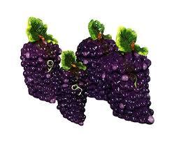 grape kitchen canisters 340 best grape kitchen ideas images on kitchen ideas