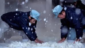 the birth of saké pbs