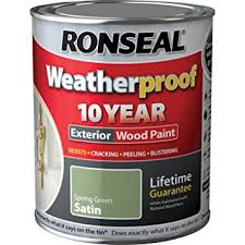Green Woodworking Tools Uk by Ronseal Rslwpsgs750 750ml Weatherproof 10 Year Exterior Wood Paint