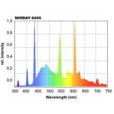 giesemann powerchrome midday t5 ho fluorescent bulb ready set reef
