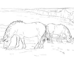 mammals coloring pages horses coloring pages free coloring pages