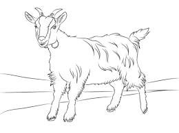 goat mask coloring page cute goat coloring page free printable coloring pages