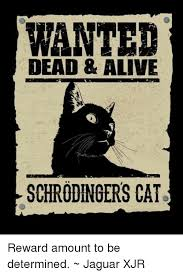 Determined Meme - wanted dead alive schrodingers cat reward amount to be determined