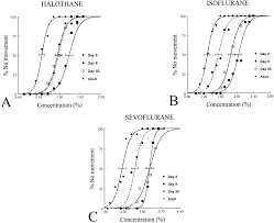 minimum alveolar concentration of volatile anesthetics in rats
