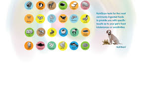 nutriscan food sensitivity and intolerance test for cats and dogs
