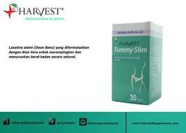 Teh Oyama jual oyama tummy slim kapsul pelangsing herbal alami tea teh