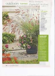 78 best ornamental grasses images on landscaping