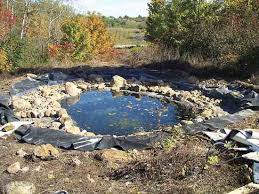 Diy Backyard Ponds Diy Natural Backyard Pond Diy Mother Earth News