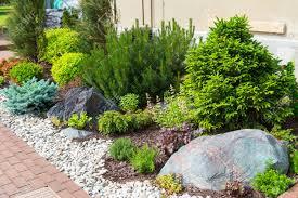 Privacy Ideas For Backyard by Garden Design Garden Design With Love Your Garden Landscaping