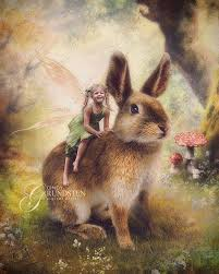 my easter bunny my easter bunny by dezzan on deviantart laughing fairy a