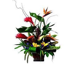 newport florist newport tropical by newport florist nf106 in newport