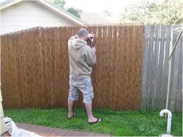 Fence Ideas For Small Backyard Backyard Cheap Fence Ideas For Backyard Fearsome Install Bamboo