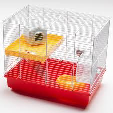 Petsmart Hamster Cages Cages At Petsmart