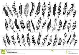 rustic decorative feathers vintage vector design stock