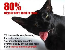 meat for cats u2013 an introduction u2013 tcfeline raw cat food