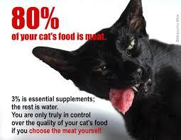 meat for cats u2013 an introduction u2013 tcfeline raw cat food