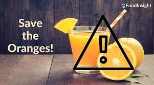 orange siege our favorite breakfast beverage is siege