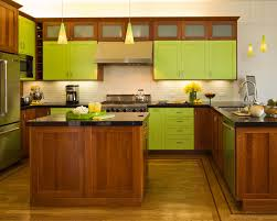 green kitchen ideas remarkable lime green kitchen and best 25 green kitchen designs