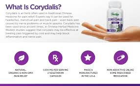 amazon com 1 pure corydalis natural pain relief 10 1 extract