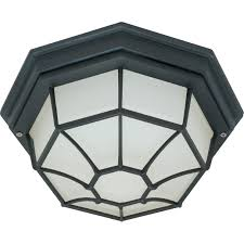 Motion Sensor Porch Ceiling Light by Nuvo 60 580 1 Light Spider Cage Ceiling Light Fixture Nuvo