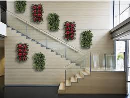 plant portraits living wall art indoor green wall