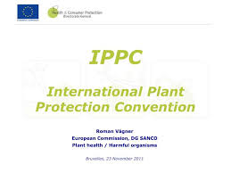 European Ippc Bureau European Commission Ppt Ippc International Plant Protection Convention Powerpoint