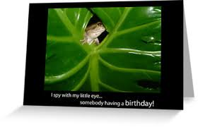 i spy birthday frog
