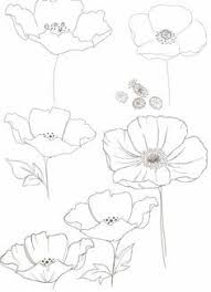 drawings of hands holding flowers google search drawings