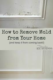 How To Remove Bathroom Mold Best 25 Remove Mold Ideas On Pinterest Diy Mold Remover Remove