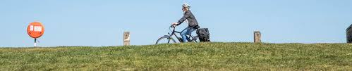 the surprising health benefits of an electric bike ride electric