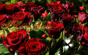 roses and hearts you ecard hearts of roses