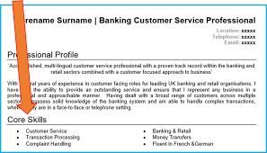 resume personal profile statement 7661