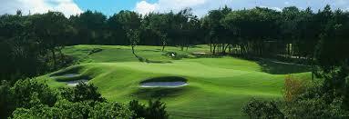 home dallas national golf club
