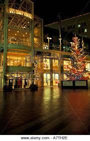 washington christmas tree at westlake center and macy u0027s star in