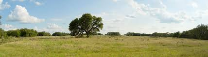 the ranches at blackbuck ridge land for sale in texas