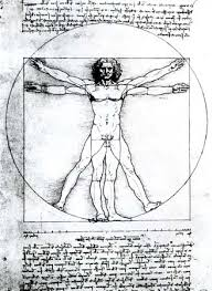 Leonardo Da Vinci Human Anatomy Drawings Leonardo Da Vinci Anatomical Studies And Drawings Italian