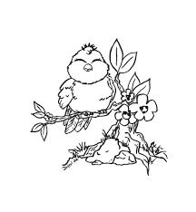 image detail kids adults printable bird coloring