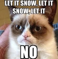 Grumpy Cat Snow Meme - grumpy cat snow 2018 funny cats