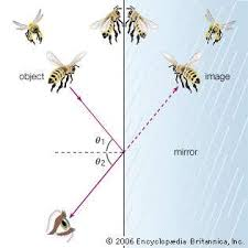 reflection of light in mirrors law of reflection optics britannica com