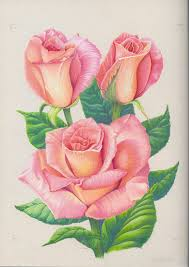 2324 best цветы images on pinterest rose paintings draw and