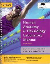 Human Anatomy And Physiology Marieb 7th Edition Human Anatomy And Physiology Lab Manual Ebay