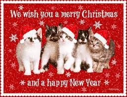 Merry Christmas Cat Meme - merry christmas and happy new year reading with leashes