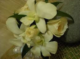 Black And White Corsage All In White Dendrobium Orchid And Spray Rose Corsage Every