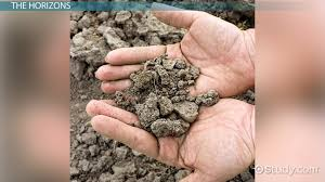 Types Meaning Soil Profile Definition Development U0026 Types Video U0026 Lesson
