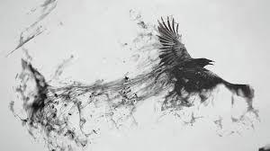 halloween raven background raven bird wallpapers top hdq raven bird images wallpapers