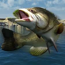 bass fishing apk bass fishing mania apk for windows phone android and apps
