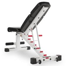 the x mark adjustable dumbbell weight bench white xm 7630 white
