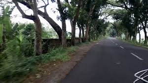 a awesome journey in nawabgonj dhaka the road is so beautiful
