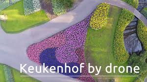 keukenhof flower gardens keukenhof the world u0027s biggest flower garden filmed with a drone