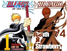 bleach filler episode guide the beginning u0026 the end of bleach manga